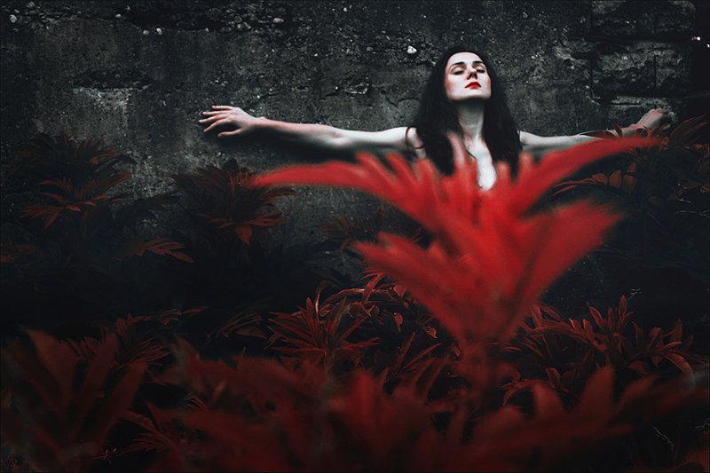 dark art, beauty, lost, nature, girl