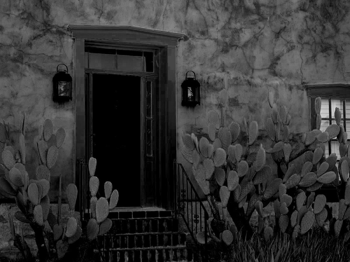 haunted house, haunted, black and white, dark house, dark beauty