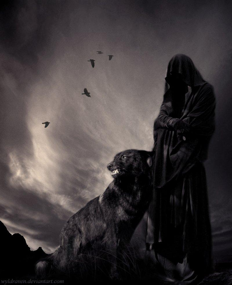 dark art, wolf, shadow, scary