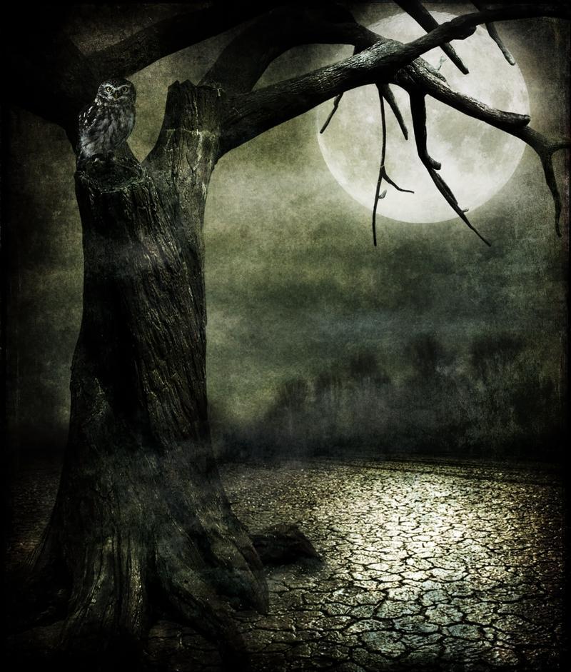 night, dark, alone, creepy, darkness