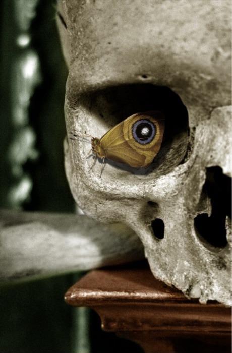 scary, dark art, creepy, skull