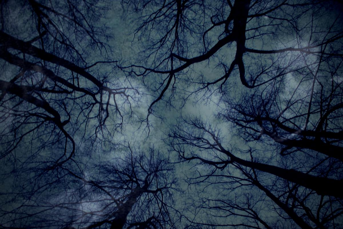 Sky, Dark