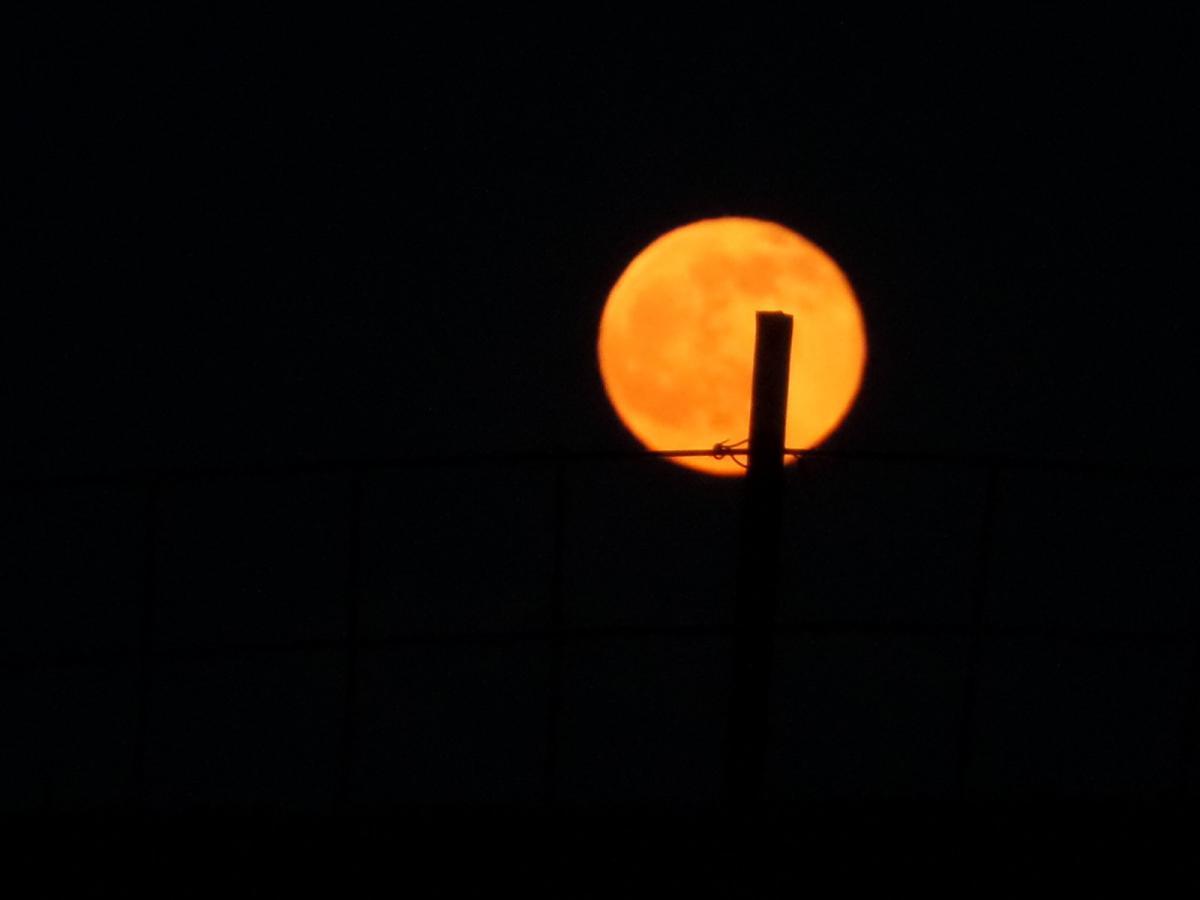 dark, moon