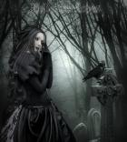 graveyard, girl, animal, crow