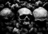 horror, skull